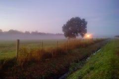 Galliano, Louisiana Stockbilder