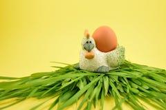 Gallina con imágenes de la acción del huevo Fotos de archivo libres de regalías