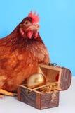 Gallina de Brown con el huevo de Pascua de oro Imágenes de archivo libres de regalías