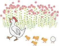 Gallina di ?ute con i pulcini vicino ai fiori Immagini Stock