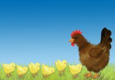Gallina y pollo Imagen de archivo
