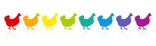Gallinacei delle galline dei polli colorati arcobaleno illustrazione di stock