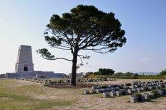Gallipoli, Turquie - cimetière solitaire allié de pin Photos libres de droits