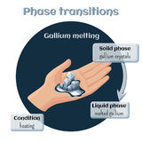 Gallium melting. Phase transition from solid to liquid state. Changes of states. Part 6 of 6. Gallium melting. Phase transition from solid to liquid state Royalty Free Stock Images