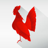 Gallo fotografia stock libera da diritti