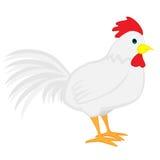 Gallo bianco sveglio del fumetto Fotografie Stock