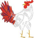 Gallo blanco libre illustration