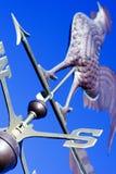 Gallo che indica verso ovest Fotografia Stock Libera da Diritti