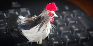 Gallo con el peine rojo en el teclado de ordenador Fotografía de archivo