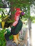 Gallo de Fighing Fotografía de archivo