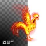 Gallo de oro ardiente ilustración del vector