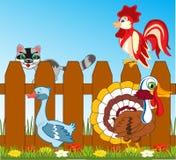 Gallo dei gallinacei con il tacchino dell'uccello e dell'oca royalty illustrazione gratis