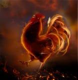 Gallo del fuego Símbolo del Año Nuevo 2017 Imágenes de archivo libres de regalías