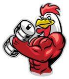 Gallo del músculo que sostiene el barbell Fotografía de archivo libre de regalías