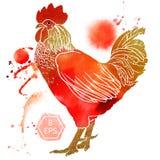 Gallo dell'acquerello Immagine Stock Libera da Diritti