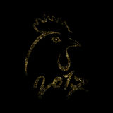 Gallo dell'oro Immagini Stock