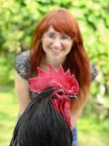 Gallo di Australorp con la ragazza Fotografia Stock Libera da Diritti