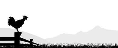 Gallo diritto di vettore di progettazione di silhuette del gallo isolato Immagini Stock Libere da Diritti
