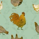 Gallo e polli Priorità bassa senza giunte di vettore Fotografia Stock Libera da Diritti