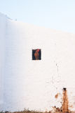 Gallo en el puesto de observación Imagen de archivo libre de regalías