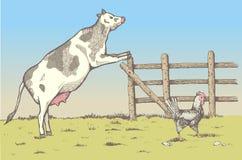 Gallo, gallina y pollo en la granja Imagenes de archivo