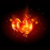 gallo 2017 Gallo del fuego rojo - símbolo del Año Nuevo 2017 en calendario chino Imágenes de archivo libres de regalías