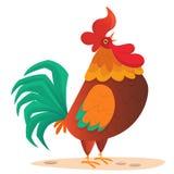 Gallo grasso del fumetto Illustrazione variopinta di vettore del gallo di canto Fotografie Stock