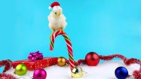 Gallo joven amarillo que se sienta en el bastón de caramelo con la decoración de la Navidad almacen de metraje de vídeo