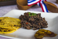 Gallo-Pinto stockfotografie