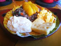 Gallo pinto. Rice and beans. Costa Rica  traditional food. Fantastic Breakfast gallo pinto rice beans. Tourism stock photos