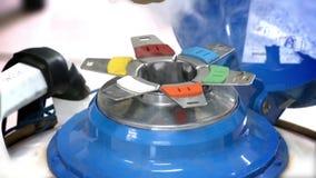 Gallone di azoto per l'allevamento degli animali archivi video