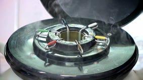Gallone di azoto per l'allevamento degli animali video d archivio
