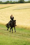 Gallop. Hanoverian. Equestrienne gallops on hillside Royalty Free Stock Photography