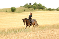 Gallop. Hanoverian. Equestrienne gallops on hillside Royalty Free Stock Image