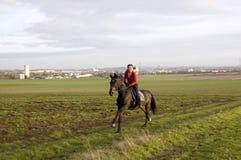 gallop Стоковые Изображения