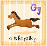 Gallop Royalty Free Stock Photo
