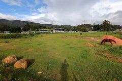 Gallop race track of Nuwara Eliya in Sri Lanka. The Gallop race track of Nuwara Eliya in Sri Lanka Royalty Free Stock Image