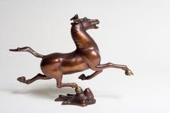 galloping топтать летая ласточки лошади Стоковое Фото