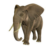 Galloping elephant. 3D rendering of a running African elephant Royalty Free Stock Photo