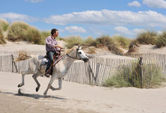 Galloping horse. Young man and his white horse galloping on the beach Royalty Free Stock Image