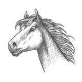 Galloping horse of andalusian breed sketch symbol Royalty Free Stock Photos