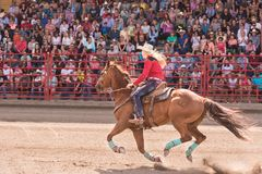 Galloping horse and cowgirl compete and barrel racing event. Williams Lake, British Columbia/Canada - July 2, 2016: woman and her horse compete in a barrel Royalty Free Stock Photos