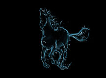 Galloping horse liquid artwork on black Royalty Free Stock Images