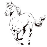 A galloping horse. Stock illustration. Royalty Free Stock Photo