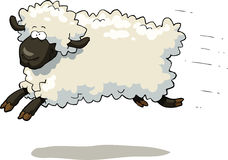 Galloping sheep. On a white background illustration Royalty Free Stock Photos