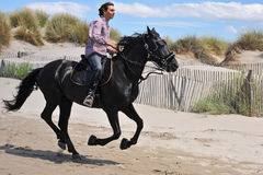 Galloping stallion. Galloping black stallion and his rider on the beach Royalty Free Stock Images