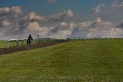 Galloping Up The Hill Stock Photography