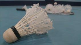 Gallos y estafa de la lanzadera del bádminton en el piso Foto de archivo