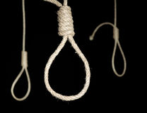 Gallows nooses Stock Image