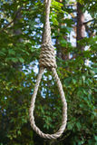 Gallows on a tree Royalty Free Stock Photo